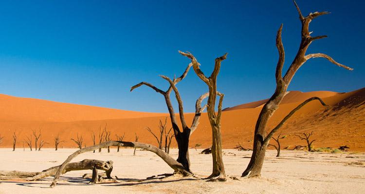 """""""Мертвая долина"""" в пустыне Намиб"""
