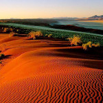 namib_desert_750x400_18