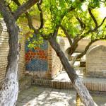 uzbekistan0015_750x400