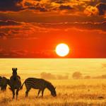 africa_botswana_750x400_007