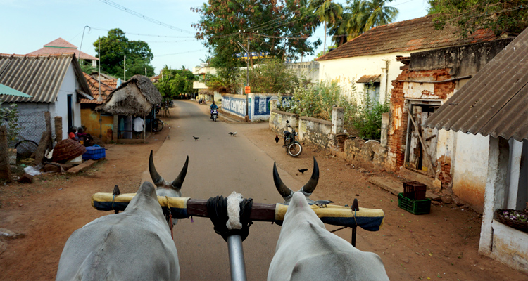 india-tamilnad_750x400_chettinad2