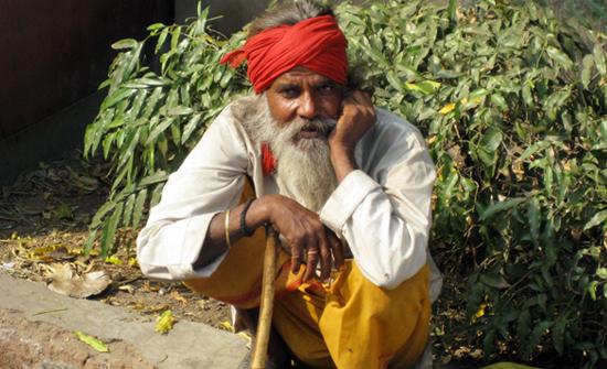 india2010-blog11