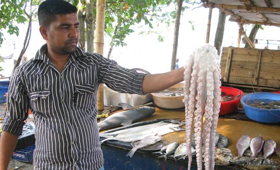 india2010-blog161