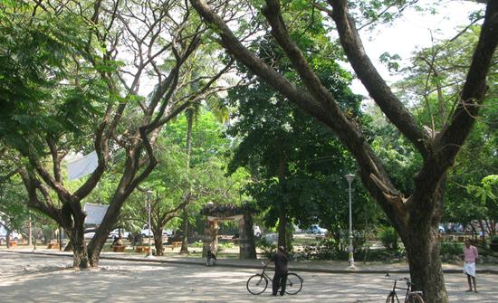 india2010-blog168