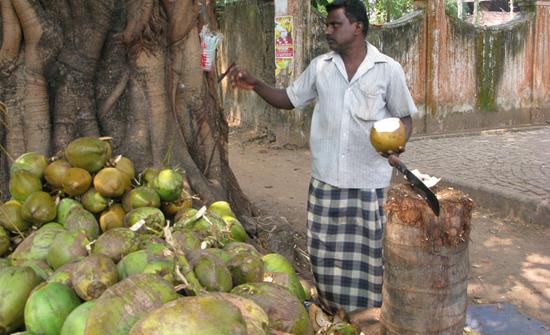 india2010-blog175