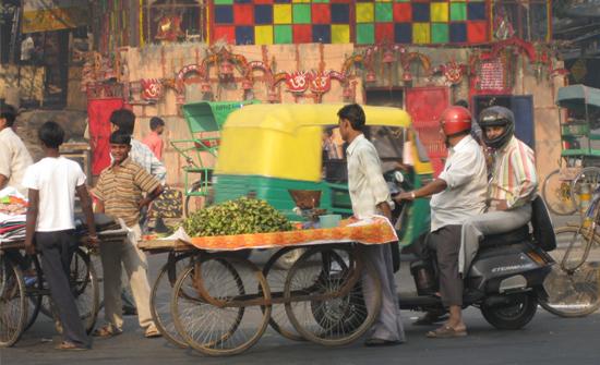 india2010-blog2
