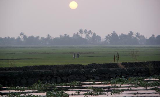 india2010-blog200