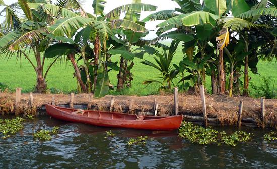 india2010-blog220