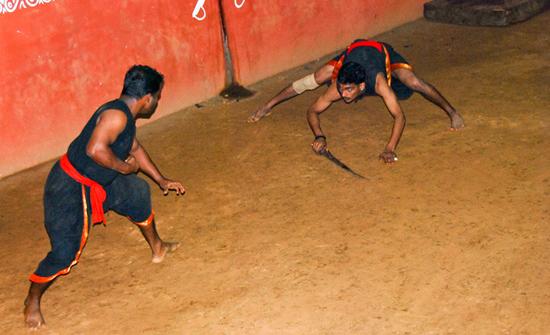 india2010-blog229