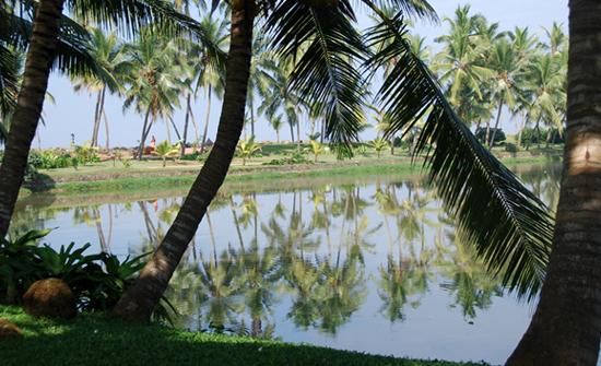 india2010-blog252
